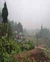 风吹过的村庄