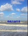 奔跑的海岸线