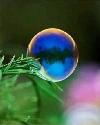 一滴水的世界