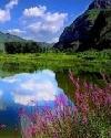 那山•那水•那情