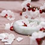 青瓷碗盛雪