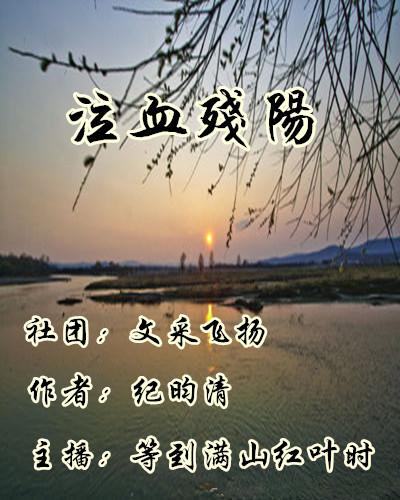 泣血残阳(小说)