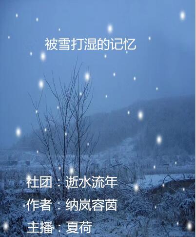 被雪打湿的记忆