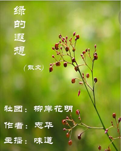 绿的遐想(散文)