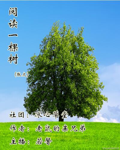 阅读一棵树(散文)