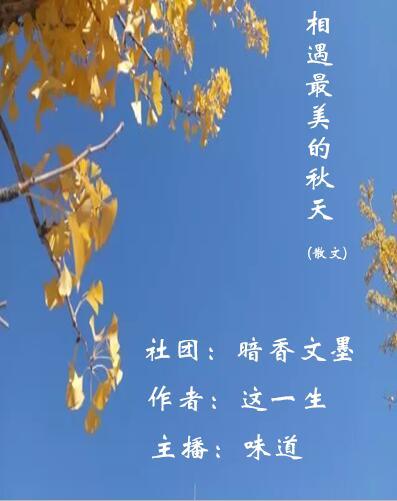 相遇最美的秋天(散文)