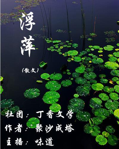 浮萍(散文)