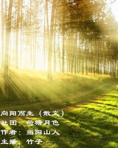 向阳而生(散文)