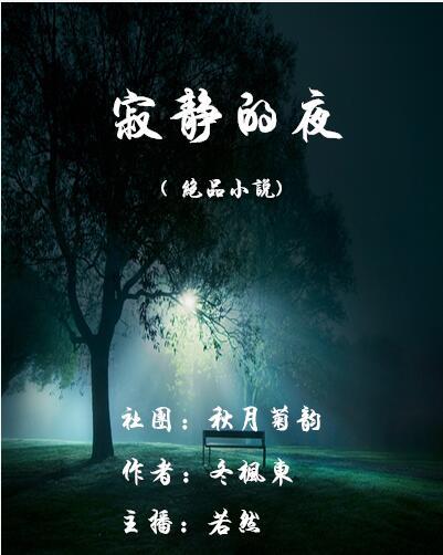 寂静的夜(绝品小说)