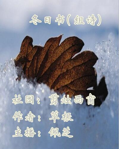 冬日书(组诗)