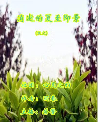 消逝的夏至即景(散文)