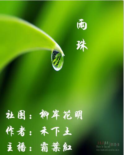 雨珠(散文)