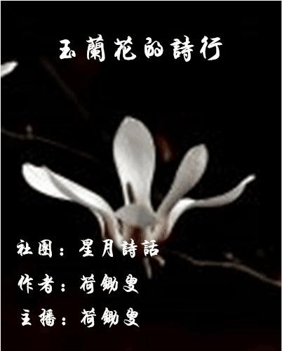 玉兰花的诗行
