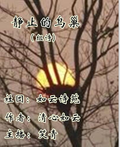 静止的鸟巢(组诗)
