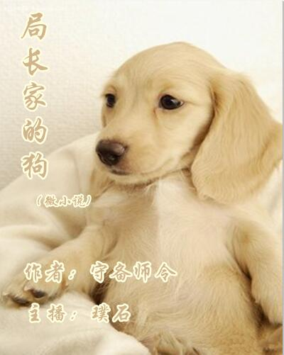 局长家的狗(微小说)