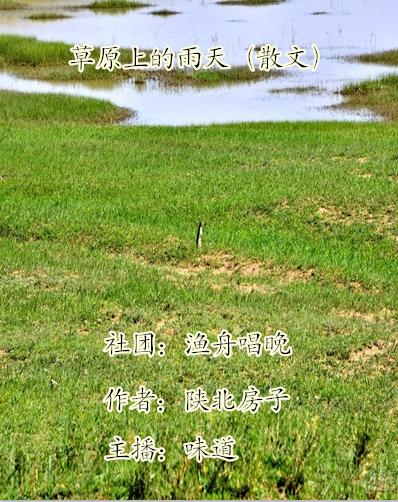 草原上的雨天(散文)
