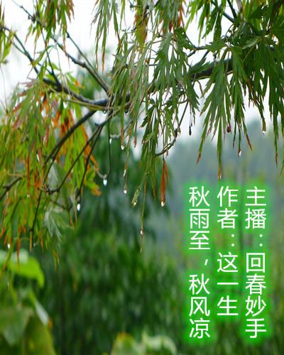 秋雨至,秋风凉