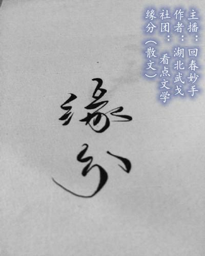 缘分(yabo亚博体育苹果)