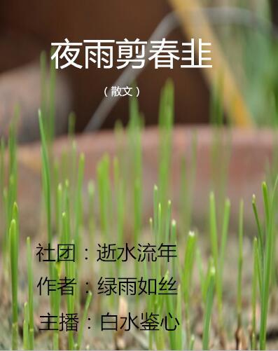 夜雨剪春韭(散文)