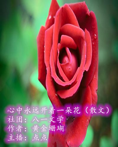 心中永远开着一朵花(散文)