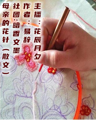 母亲的花针(散文)